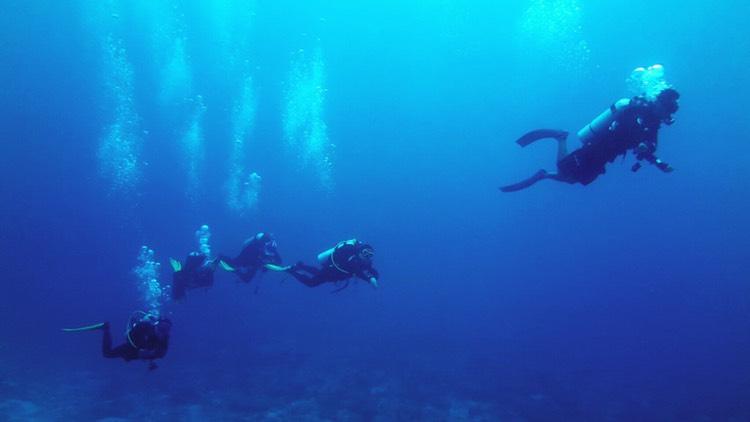 水中導潛活動