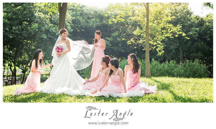 Beautiful Bride with all Lovely Bridesmaids.
