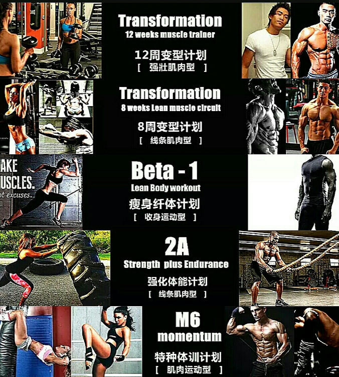 My programs: 12 wks bulk up 8 wks. , 2A, B1, M6