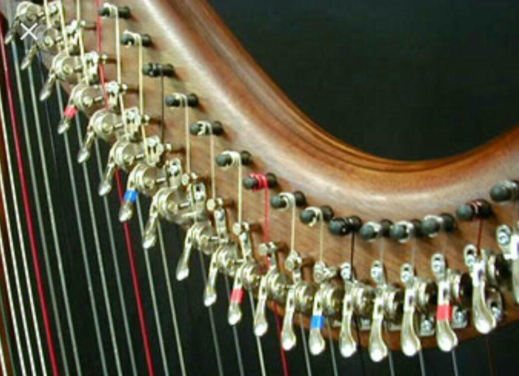 若學生家中只有level harp 亦可上門授課