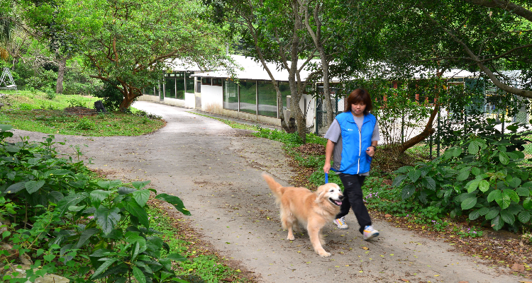 環境清幽,寵物可以在大自然環境中散步