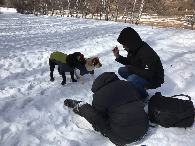 雪景拍攝🎬01
