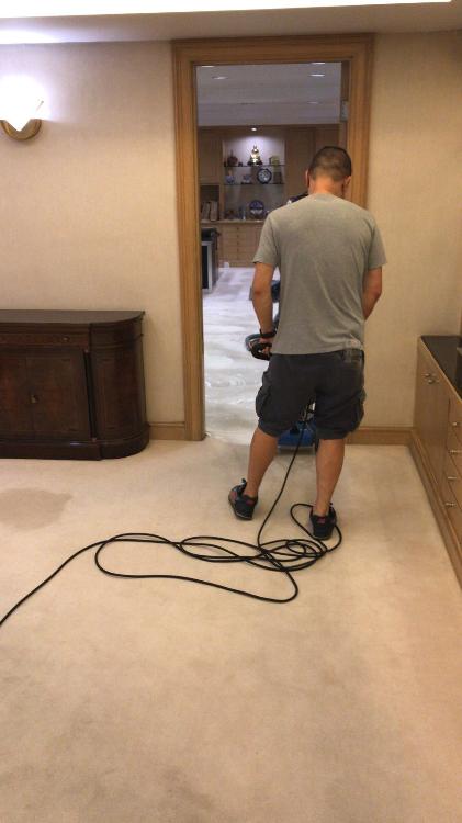 清潔寫字樓地毯